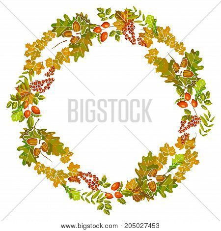 Autumn leaves wreath or fall leaf decoration template design for thanksgiving seasonal sale. Vector maple, chestnut or birch leaf, rowanberry and rowan or oak acorn, elm tree and aspen leaf foliage