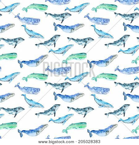 Seamless pattern of hand painted watercolor blue whales in cartoon style. Sea mammal.