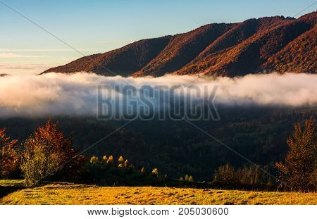 Cloud Rising Above The Forest In Autumn Mountains