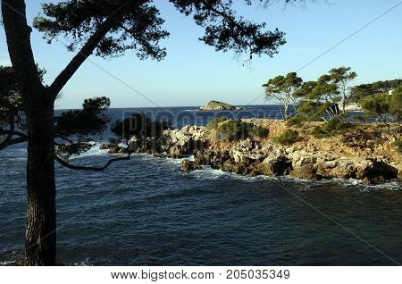 Mediterranean Landscape In Bandol, France