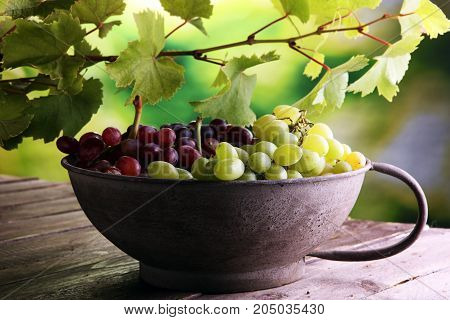 Grapes on wooden table and grape leaves . Healthy fresh fruit wine grapes.