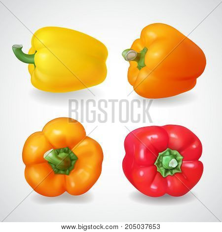 Pepper bell vegetable. Realistic vector icon set.