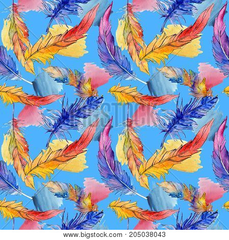 Watercolor bird feather pattern from wing. Aquarelle feather for background, texture, wrapper pattern, frame or border.