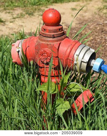 Old fire hydrant in the grass in summer