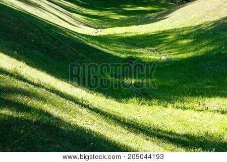 Perfect green grass lawn on landscape designed summer park hollow. Striped shadows on curved meadow surface of grass lawn.
