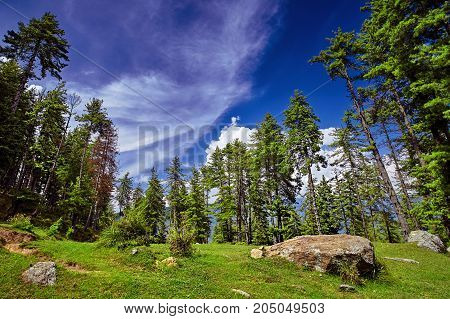 Beautiful mountain forest against blue sky background. Kullu valley. Naggar Himachal Pradesh. North India.