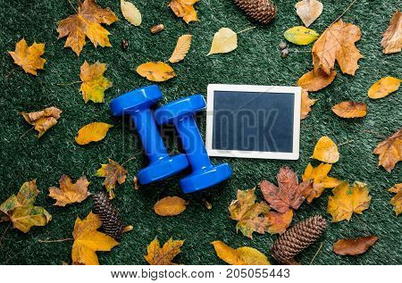 Blue Dumbbells And Autumn Leaves With Blackboard