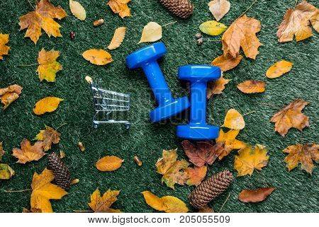 Blue Dumbbells And Autumn Leaves With Shopping Cart