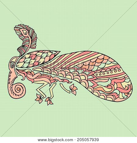 Moth with ethnic floral ornaments. Zentagle pattern. Vector doodle illustration. Night-fly moth
