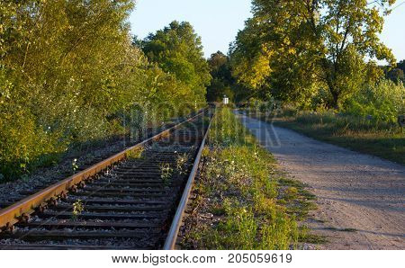 In the foreground are trees and bushes. Railroad tracks are lighted by sunset. They are running behind the horizon. Beside the track is the path. In the background is the blue sky.
