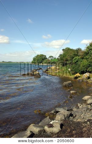 Shore Of Strangford Lough