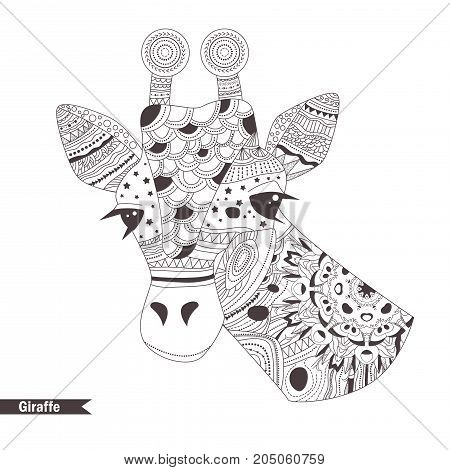 Giraffe. Coloring book for adult, antistress coloring pages. Hand drawn vector isolated illustration on white background. Henna mehendi, tattoo sketch.