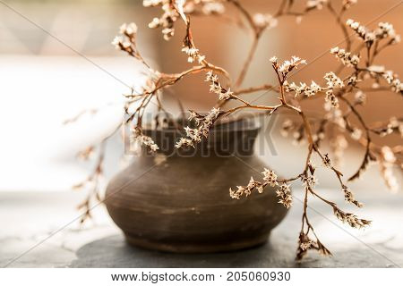 Beautiful still life with a dark vase and a dry branch with flowers in it interior decoration