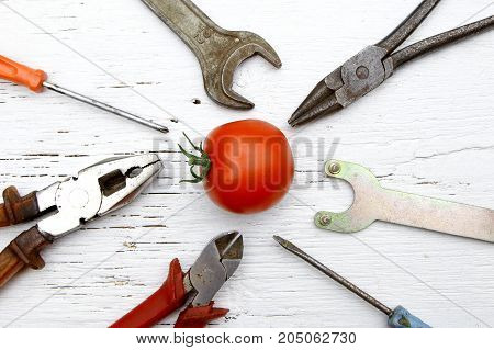 saying if it ain't broke don't fix it metaphor with whole tomato and tools