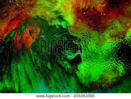 Lion in the cosmic space. Lion photos and graphic and glass effect