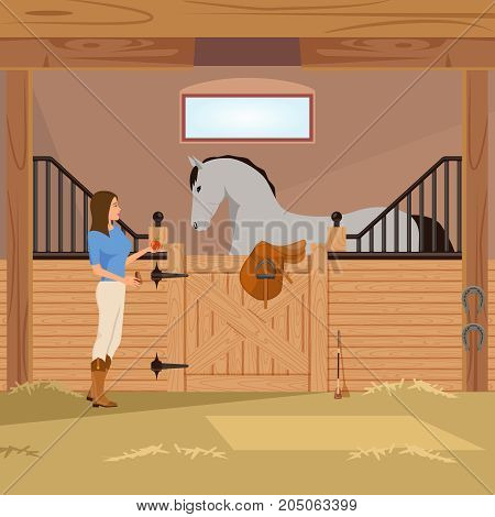 Girl with apple near grey trotter in stall with horseshoes, saddle and whip flat composition vector illustration