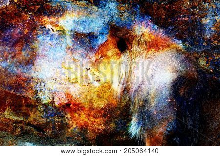 Lion and light cosmic effect. Lion photos and graphic effect