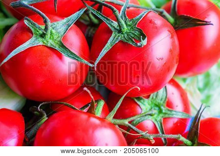 Closeup bright red fresh tomatoes ready for making salad