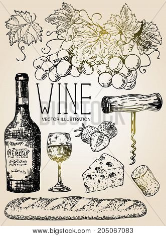Vector ink hand drawn style illustration of red wine objects for menu, recipe. Bottle of wine, glass of wine, bunch of grapes, strawberry, bread, cheese, cork and corkscrew.