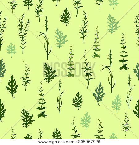 Seamless Background with Fresh Green Grass, Lilac Flowers and Leaves, Tile Pattern for Your Design. Vector