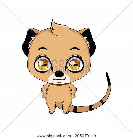 Cute Stylized Cartoon Mongoose Illustration ( For Fun Educational Purposes, Illustrations Etc. )