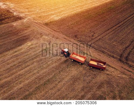 Corn maize harvest aerial view of tractor with trailer in agricultural field