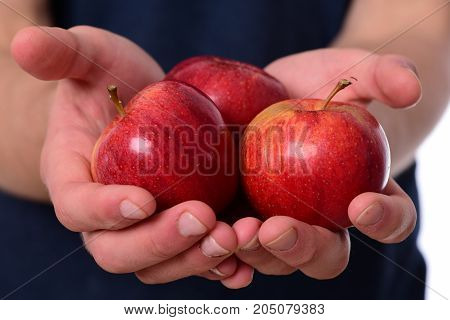 Vitamins And Fitness Concept. Male Hands Hold Red Apples.