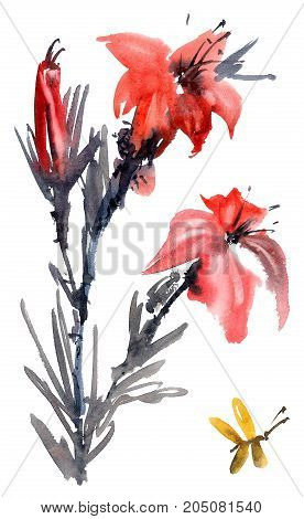 Watercolor and ink illustration of lily flower with batterfly. Sumi-e u-sin painting.