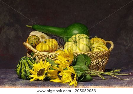 Autumn still life / Different decorative pumpkins on the table
