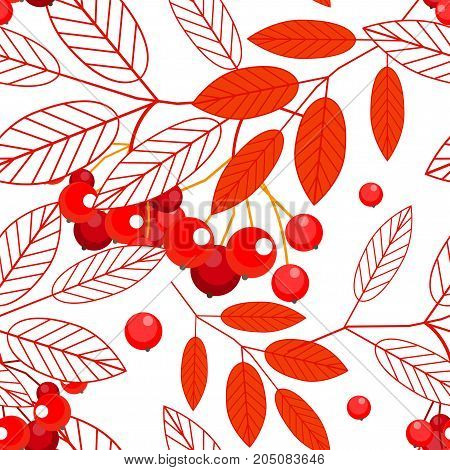 Autumn seamless pattern with openwork ashberry leaves and red berries on a white background. Vector.