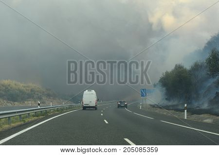 Forest Fire On The Road