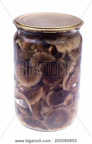 Marinated mushrooms in glass jar on white background. Studio Photo