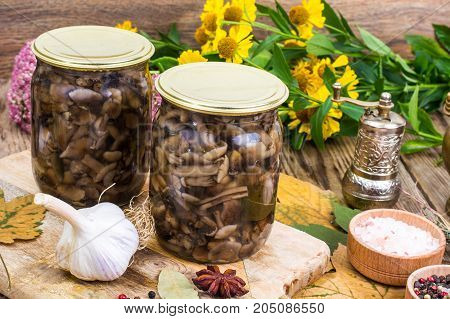 Autumnal forest marinated mushrooms in glass jar, salt, spices on  wooden table. Studio Photo