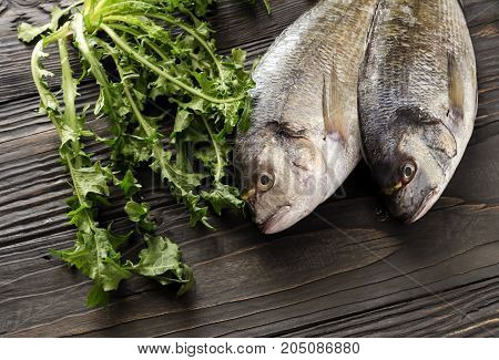 Two raw gilthead (Sparus aurata) on a wooden table close-up