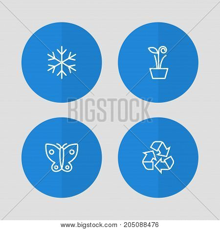Collection Of Recycle, Snowflake, Butterfly And Other Elements.  Set Of 4 Natural Outline Icons Set.