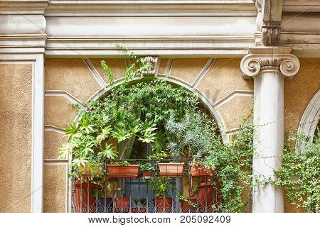 Balcony with various flowers and plants Milan Italy