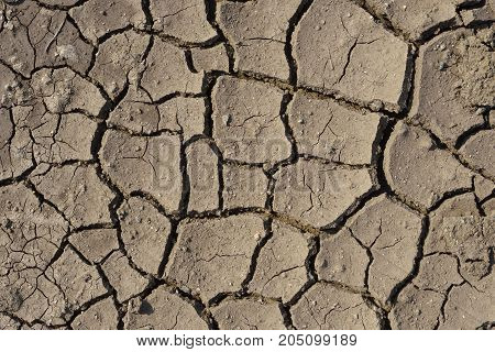 Close up of dried and cracked clay picture from the North of Greece.
