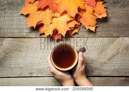 Cup of tea in hand, colorful autumn leaves on wooden board. Fall still life, vintage style. Top view.