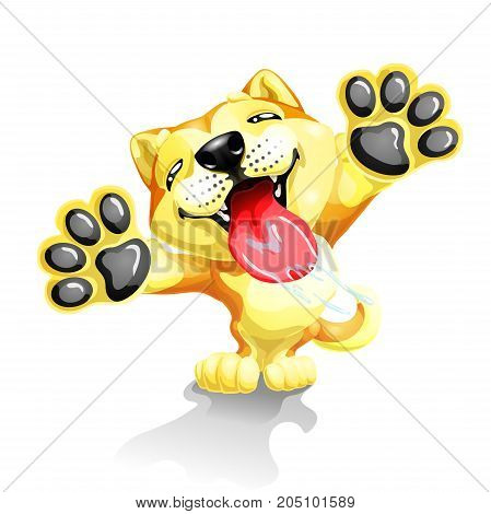 The lovely puppy Akita Inu licks glass standing on hinder legs. A yellow dog a symbol 2018 new years according to the Chinese calendar. A vector illustration separately on white.