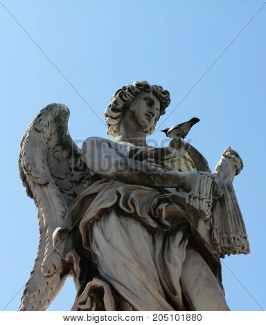Angel with the Whips sculpture in Rome Italy with pigeon resting on his shoulder. One of the angels at famous Ponte Sant' Angelo bridge. Baroque sculpture by Lazzaro Morelli.