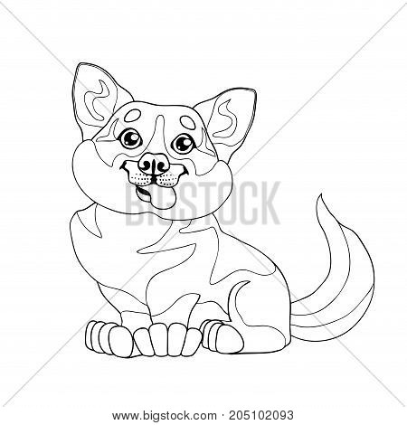 The lovely puppy dog Welsh Corgi sits. A contour line vector illustration separately on white, page coloring book, square.