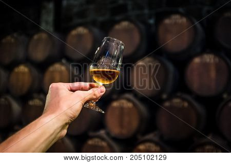 A glass of alcohol in a wine cellar with barrels, Man holding glass of port in cellar, Drink to health