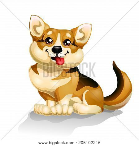 The lovely puppy dog Welsh Corgi sits is isolated on white. A yellow dog a symbol 2018 new years according to the Chinese calendar. A cartoon vector illustration.