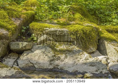 low angle shot of some mossy overgrown stones in sunny ambiance