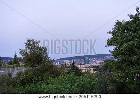 zurich city skyline business district evening blue hour view with tree