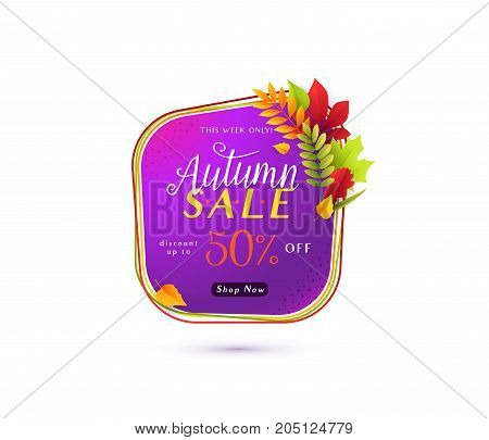 Vector illustration of fashion autumn sale banner isolated on white background with white round geometric frame, color lines, calligraphy text sign 50 percent off, falling leaves