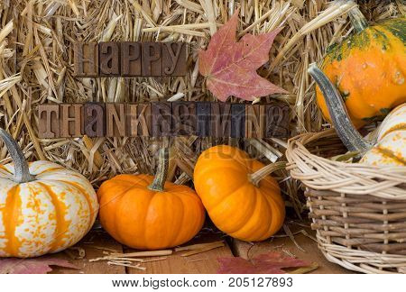 Autumn setting of colorful gourds and pumpkins with happy thanksgiving lettering