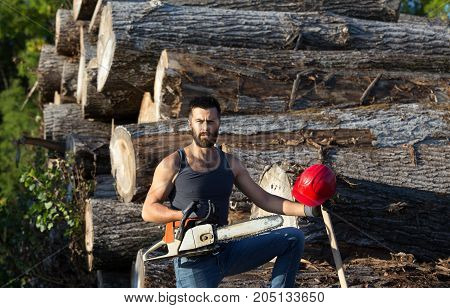 Lumberjack With Chainsaw And Ax On Trunks