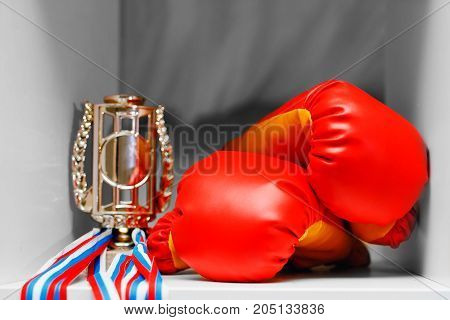 Gloves for boxing, the winner's cup, medals. Concept winner, trophy regiment.