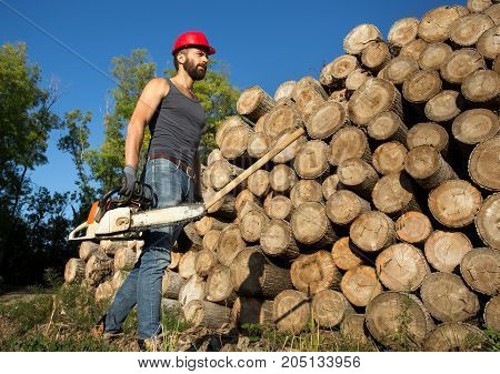 Lumberjack With Chainsaw And Ax Beside Trunks